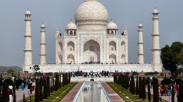 Impulsan cooperacion en turismo entre Vietnam e India hinh anh 1