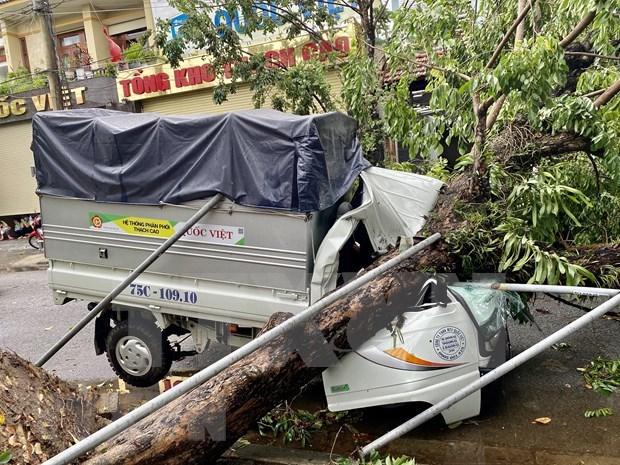 Vietnam reporta al menos cinco muertos por el tifon Noul hinh anh 1