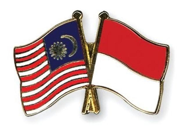EE.UU. e Indonesia agilizan cooperacion en infraestructura y respaldo al sector financiero hinh anh 1