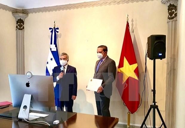 Desea Honduras promover relaciones de amistad y cooperacion con Vietnam hinh anh 1