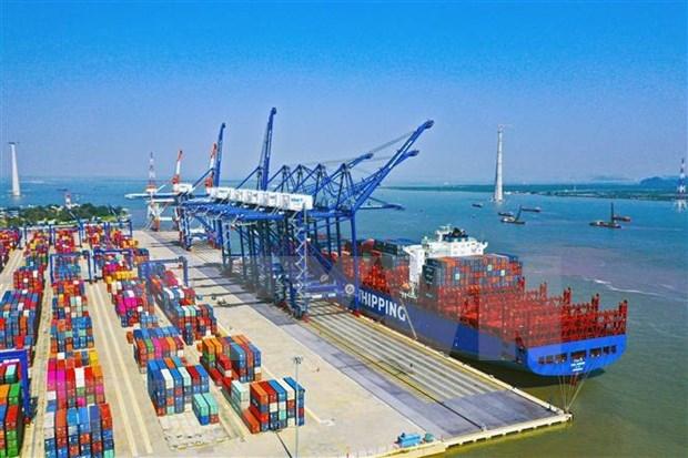Empresas portuarias vietnamitas se ven menos afectadas por la pandemia hinh anh 1