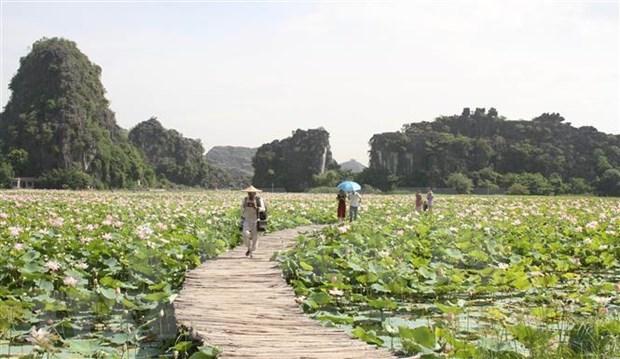 Turismo domestico de Vietnam aspira a recuperarse despues del COVID-19 hinh anh 1
