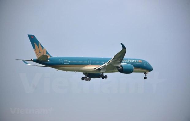 Vietnam Airlines recupera por completo su mercado nacional hinh anh 1