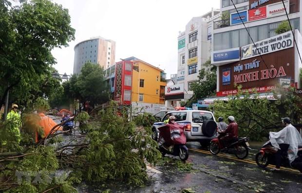 Simpatiza Laos con Vietnam por danos del tifon Noul hinh anh 1