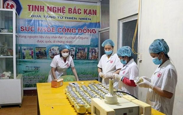 Provincia vietnamita promueve la venta y consumo de productos locales hinh anh 1