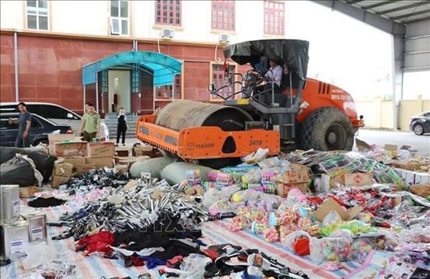 Provincia Vietnamita Ninh Binh destruye gran cantidad de bienes ilegales hinh anh 1