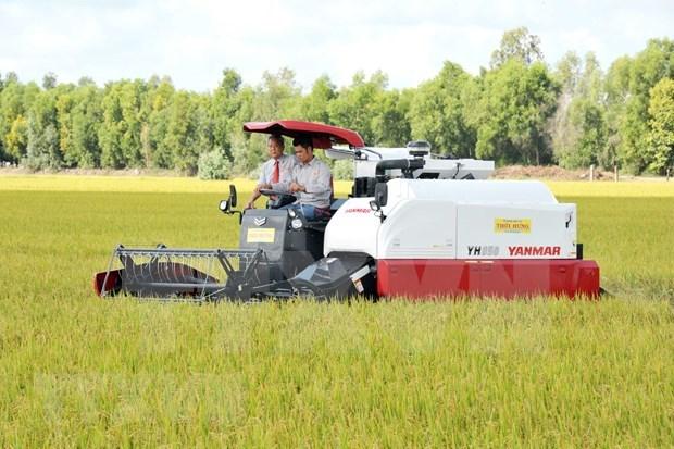 Exportara provincia survietnamita 126 toneladas de arroz a Union Europea hinh anh 1