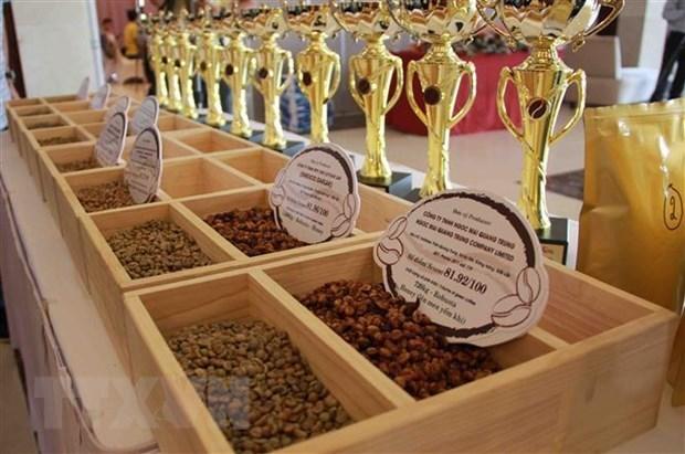 Vietnam se convierte en mayor proveedor de cafe de Japon hinh anh 1