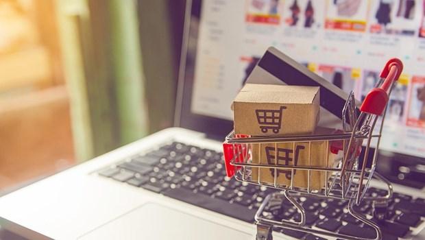 Provincia vietnamita de Vinh Phuc impulsa desarrollo del comercio electronico hinh anh 1