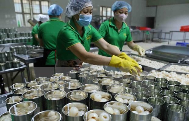 Aceleran cuarentena para frutas vietnamitas exportadas a EE.UU. hinh anh 1