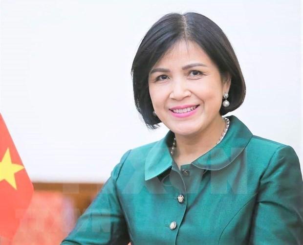 Vietnam y otros miembros de OMC promueven papel de mujeres en comercio internacional hinh anh 1