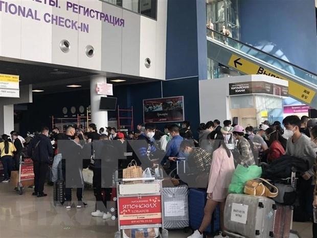 Repatrian a 270 ciudadanos vietnamitas varados en Rusia hinh anh 1
