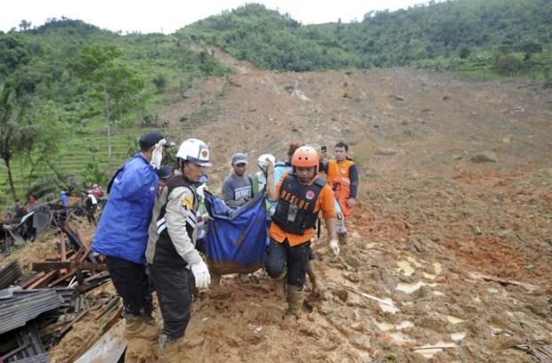 Diez muertes por deslizamientos de tierra en Indonesia hinh anh 1