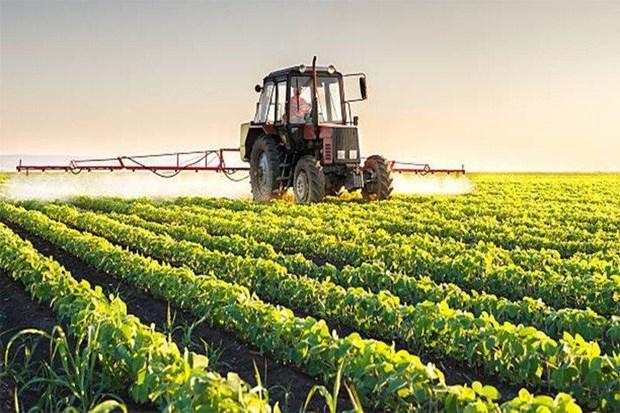 Tailandia prohibe productos quimicos toxicos para fomentar agricultura organica hinh anh 1