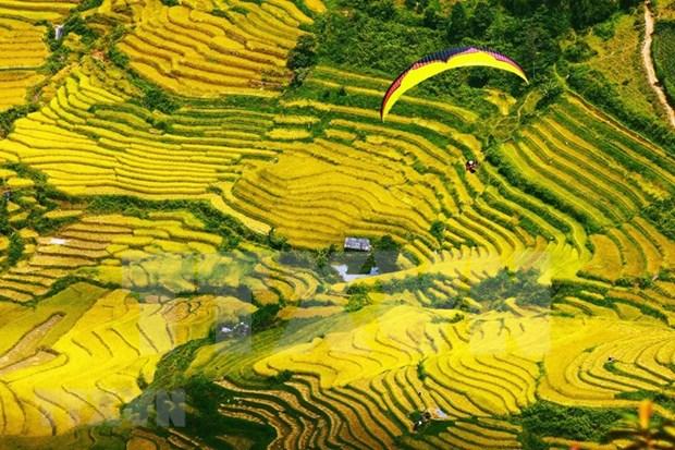 Contemplan la belleza de Mu Cang Chai en helicoptero hinh anh 1