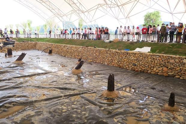 Presentan nuevos descubrimientos arqueologicos de Vietnam hinh anh 1