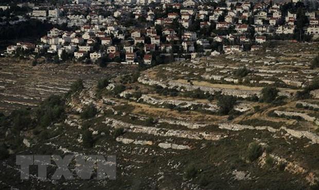 Vietnam llama a Israel a detener expansion de asentamientos hinh anh 1