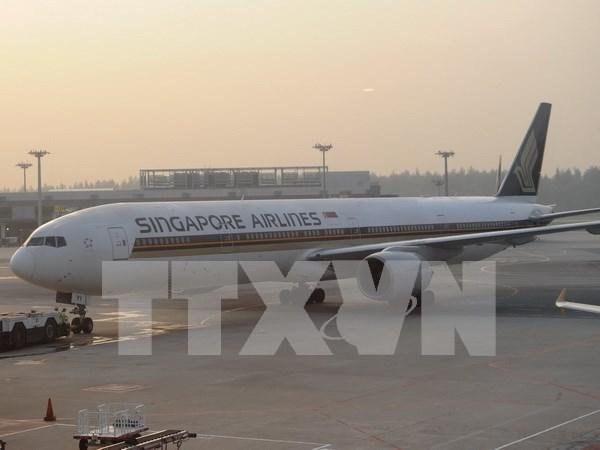 """Singapore Airlines abandona el plan de """"vuelos a ninguna parte"""" hinh anh 1"""