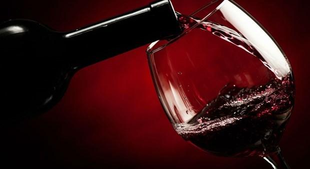 Efectuaran en Vietnam degustacion del vino argentino hinh anh 1