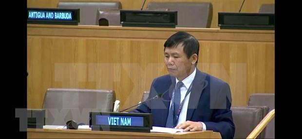 Vietnam llama a la cooperacion internacional para promover la universalizacion de las vacunas contra el COVID-19 hinh anh 1