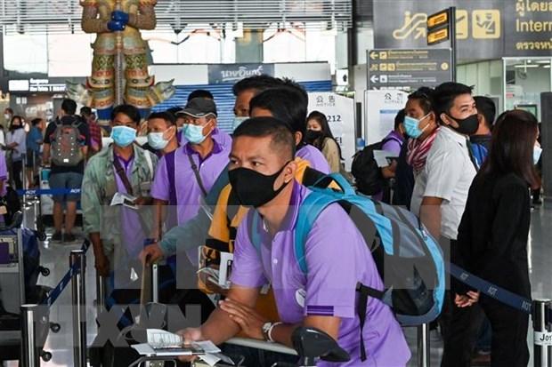 Tailandia permitira permanencia de trabajadores migrantes tras expirar sus contratos hinh anh 1