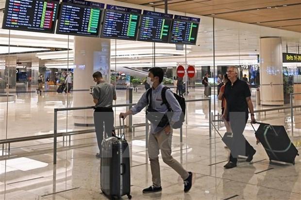 Singapur prepara medidas de seguridad para abrir la frontera hinh anh 1