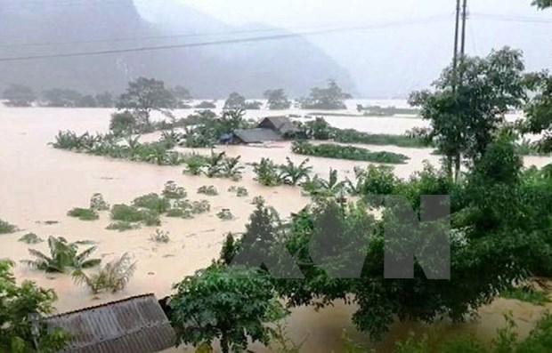 Inundaciones en centro de Vietnam dejan cuatro muertos hinh anh 1
