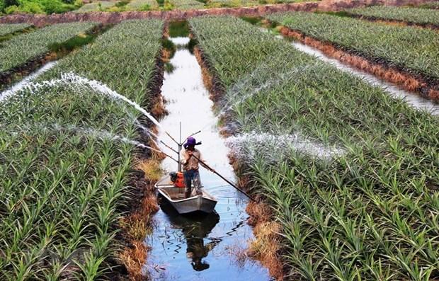 Provincia vietnamita de Long An encabeza ingreso presupuestario en delta de Mekong hinh anh 1