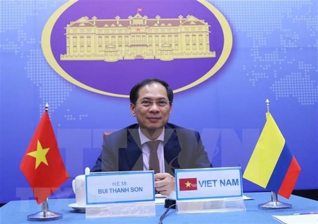 Vietnam y Colombia realizan quinta consulta politica a nivel de vicecancilleres hinh anh 1