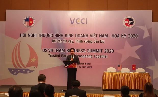 Efectuan Cumbre Empresarial Vietnam-Estados Unidos hinh anh 1