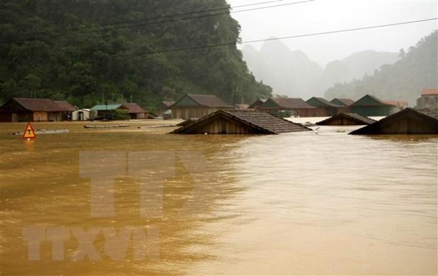 Cruz Roja de Vietnam brinda asistencia urgente a afectados por inundaciones hinh anh 1