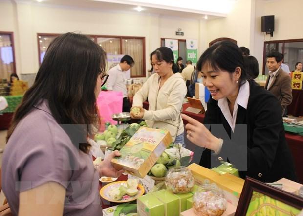 Vietnam continua la reforma institucional como parte del compromiso con el EVFTA hinh anh 1