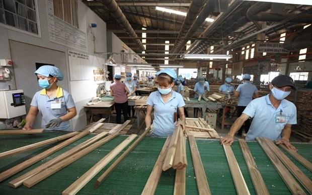 Vietnam espera alcanzar mas de 12 mil millones de dolares por venta de madera y derivados hinh anh 1