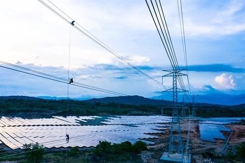 Entra en operacion proyecto de energia en provincia vietnamita de Ninh Thuan hinh anh 1