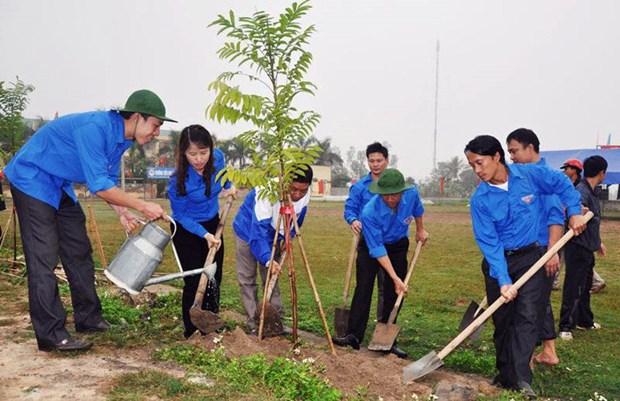 Miles de estudiantes participan en carrera comunitaria por la plantacion de arboles hinh anh 1