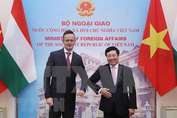 Vietnam y Hungria refuerzan lazos bilaterales multifaceticos hinh anh 1