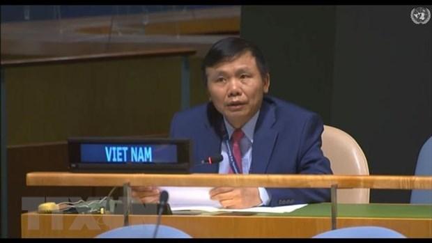 Reitera Vietnam compromiso con misiones de paz de ONU hinh anh 1