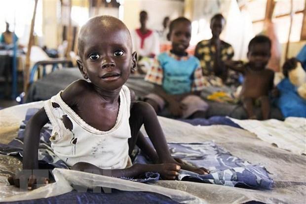 Llama Vietnam a apoyo internacional a Sudan del Sur hinh anh 1