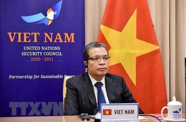 Vietnam se compromete a contribuir al mantenimiento de paz en Golfo Persico hinh anh 1