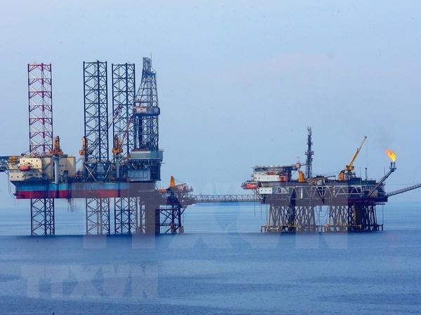 Provincia vietnamita de Soc Trang aspira a proteger seguridad del petroleo y gas hinh anh 1