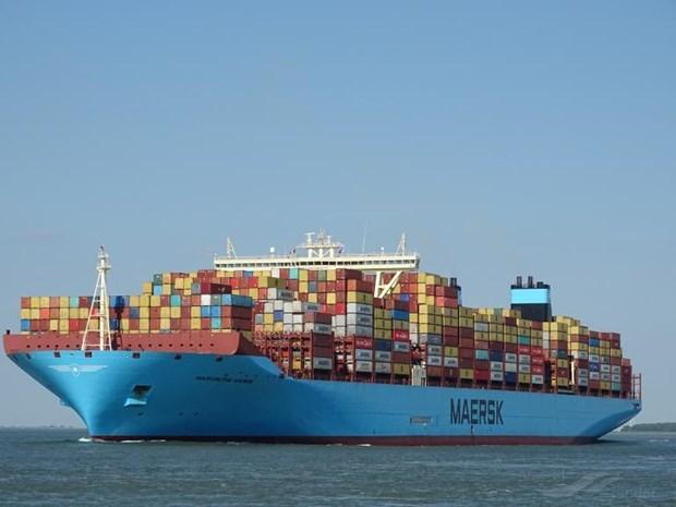 Atracaran super carguero al puerto maritimo vietnamita de Cai Mep hinh anh 1