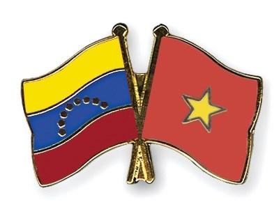 Presentacion de nueva directiva de Casa de Amistad Venezuela-Vietnam hinh anh 1