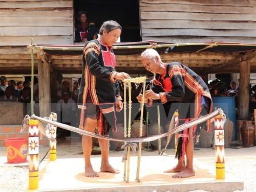 Restauran ceremonia de adoracion de agua de etnia Jrai hinh anh 1