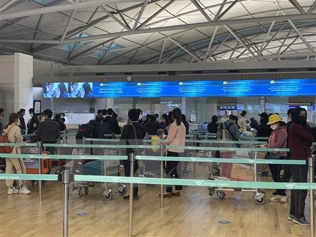 Repatrian unos 350 vietnamitas de Canada y Corea del Sur a casa hinh anh 1