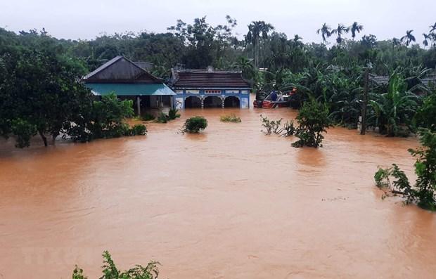 Comunidad vietnamita en Malasia apoya a connacionales a superar las consecuencias de desastres naturales hinh anh 1