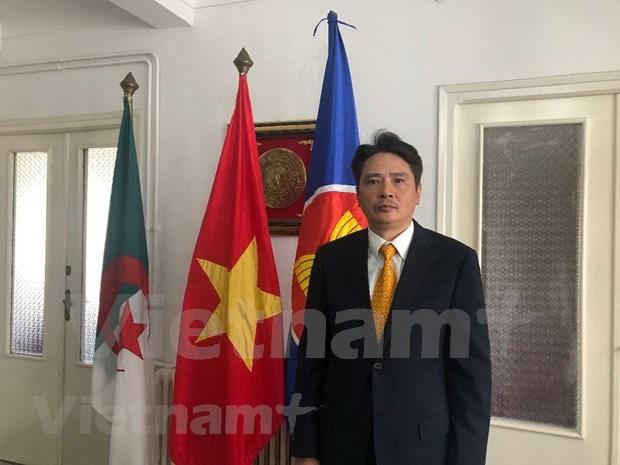 Vietnam y Argelia disponen de potencialidades de cooperacion en comercio e inversion hinh anh 1