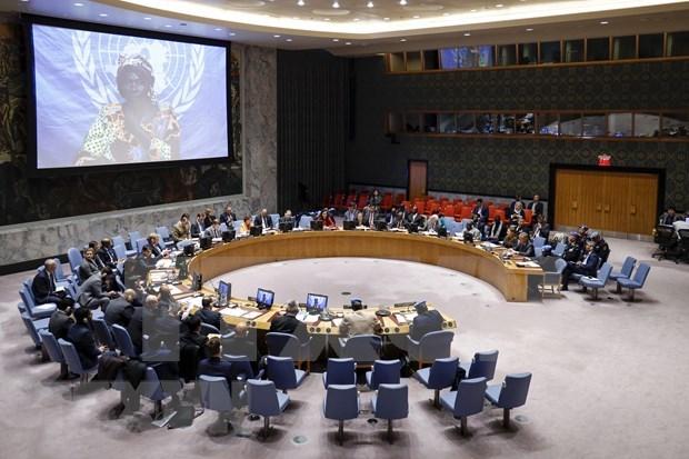 Vietnam respeta papel del derecho internacional en mantenimiento de la paz y estabilidad globales hinh anh 1