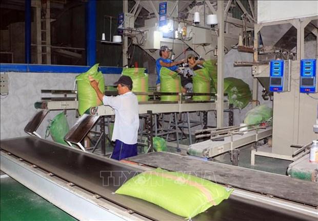 Balanza comercial de Vietnam registra superavit record en los primeros 10 meses hinh anh 1