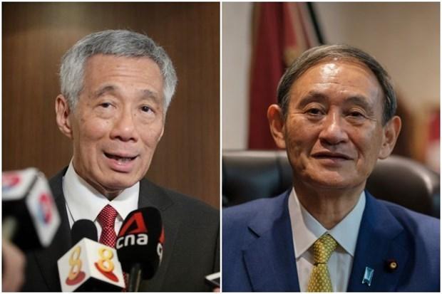 Singapur y Japon discuten fomento de relaciones bilaterales en medio del COVID-19 hinh anh 1