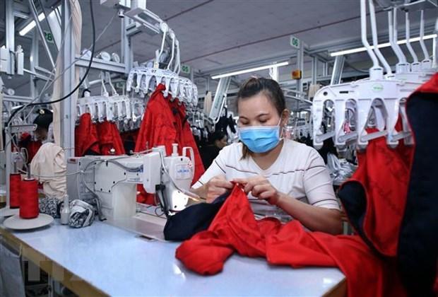 Crece numero de nuevas empresas en Vietnam en octubre hinh anh 1